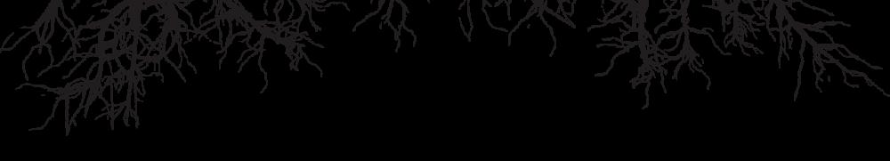 GREENBTS roots